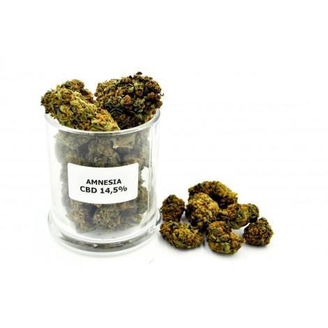 AMNESIA Susz Konopny CBD 14,5% - 2 gramy