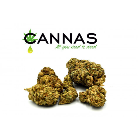Susz Konopny CBD 5,2% OG KUSH - 1 gram