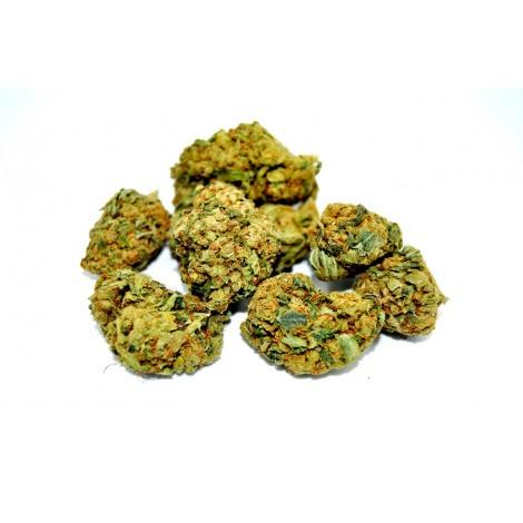 AMNESIA Susz Konopny CBD 14,5% - 1 gram